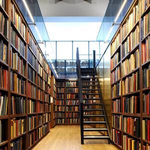 Библиотеки Россоши